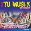 Tu Musi-K Vallenato, Vol. 1