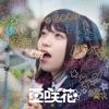 SHINY DAYS(TVアニメ「ゆるキャン△」OPテーマ) - EP