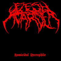 Flesh Hoarder - Homicidal Necrophile artwork