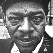 Hate To See You Go - Little Walter - Little Walter