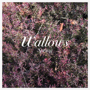 Wallows - These Days