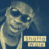 Fool Is the Last to Know - Shatta Wale