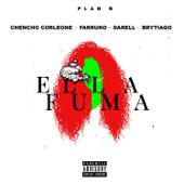 Ella Fuma (feat. Chencho Corleone, Farruko, Darell & Brytiago) - Plán B