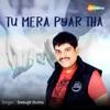 Tu Mera Pyar Tha