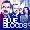 Blue Bloods, Season 9 wiki, synopsis