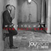 What You Want (feat. Team Salut) [Team Salut Remix]- Single