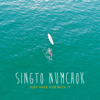 Just Have Fun With It - Singto Numchok