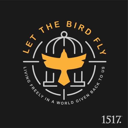 Cover image of Let the Bird Fly!