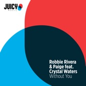 Without You (feat. Crystal Waters) - Single