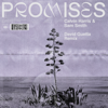 Calvin Harris, Sam Smith - Promises (David Guetta Extended Remix) artwork