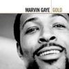 Marvin Gaye & Tammi Terrell - Ain't No Mountain High Enough  arte