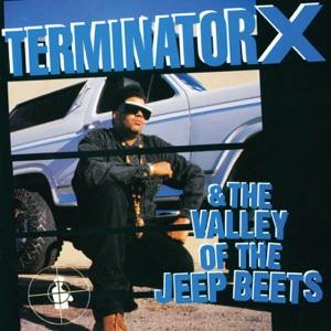 Terminator X & Bonnie N Clyde - Homey Don't Play Dat
