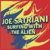 Surfing with the Alien Cover Art