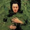 Alain Bashung - La nuit je mens artwork