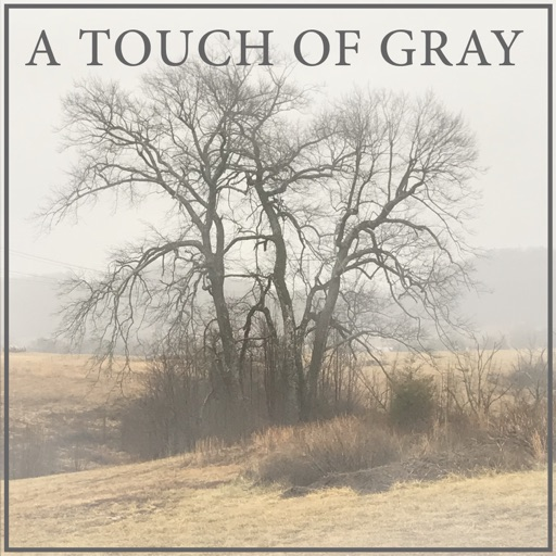 Cover image of A Touch of Gray