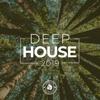 Разные артисты - Deep House 2019 обложка