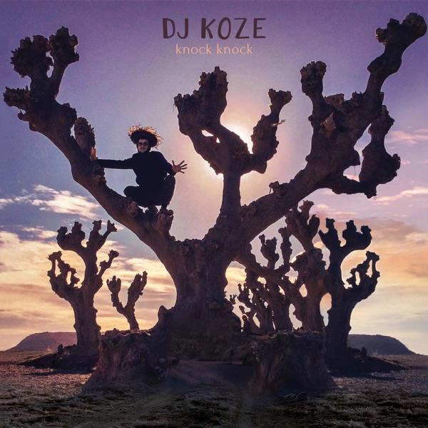 DJ Koze mit Pick Up
