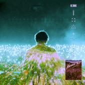 NOVA (The Remixes, Vol. 2)-RL Grime