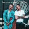 Familiar - Liam Payne & J Balvin mp3