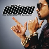 - StreamTitle='Shaggy Feat. Rayvon - In The Summertime';StreamUrl='';