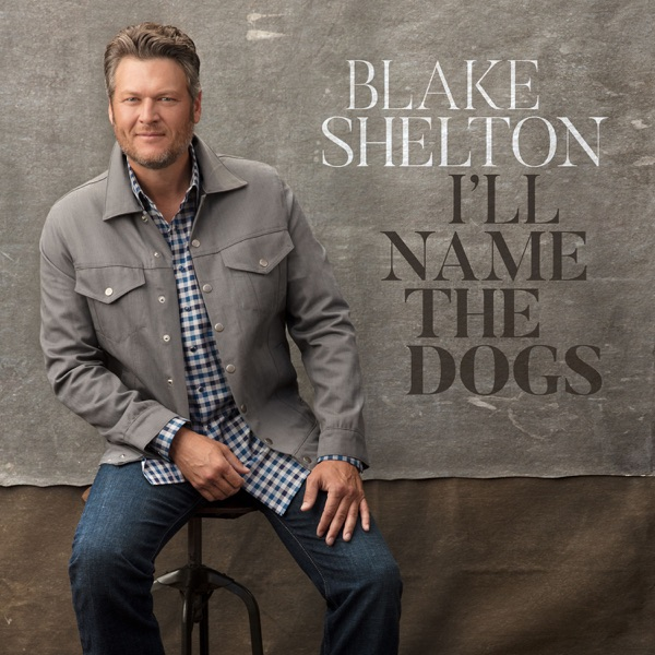 I'll Name the Dogs - Blake Shelton song cover