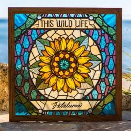This Wild Life – Petaluma [iTunes Plus M4A] | iplusall.4fullz.com