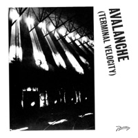 Avalanche (Terminal Velocity) [feat. Jarvis Cocker] - Single Mp3 Download