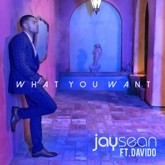 What You Want - Single