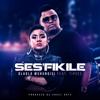 Dladla Mshunqisi & Tipcee - Ses'fikile artwork