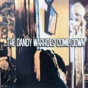 Not If You Were the Last Junkie On Earth by The Dandy Warhols