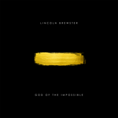 While I Wait (Acoustic) - Lincoln Brewster