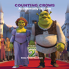 Counting Crows - Accidentally In Love artwork