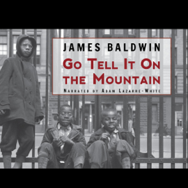 Go Tell It On the Mountain (Unabridged) audiobook