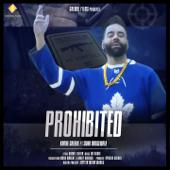 Prohibited (feat. Sidhu Moosewala)