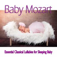 Einstein Baby Lullaby Academy - Baby Mozart: Essential Classical Lullabies for Sleeping Baby artwork