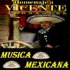 Musica Mexicana - Homenaje a Vicente Fernandez Album