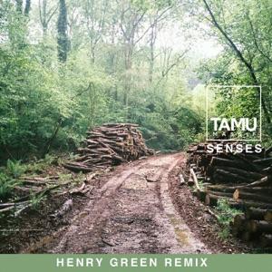 Senses (Henry Green Remix) - Single