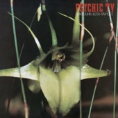 Psychic TV - The Orchids