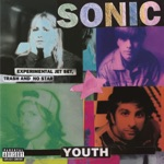 Sonic Youth - Bull In the Heather