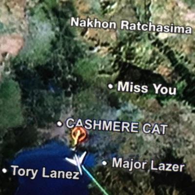 Miss You - Single - Major Lazer