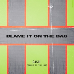 Blame It on the Bag - Single Mp3 Download