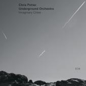 "Chris Potter Underground Orchestra - Imaginary Cities, Pt. 4 ""Rebuilding"""