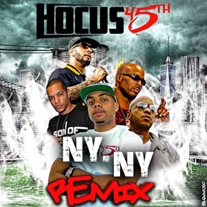 NY NY (feat. DMX, Swizz Beatz, Styles P & Peter gunz) [Remix] - Single Mp3 Download