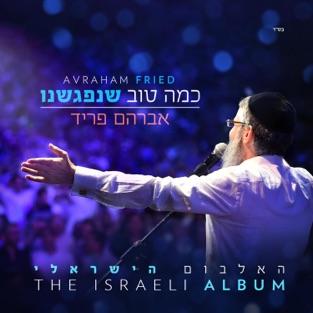 כמה טוב שנפגשנו – Avraham Fried