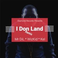 Mr Dil - I Don Land (Remix) [feat. Wizkid & Kel] - Single
