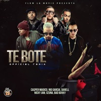 Te Boté (feat. Darell, Nicky Jam & Ozuna) [Remix] - Single Mp3 Download