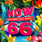 NOW That's What I Call Music, Vol. 66-Various Artists
