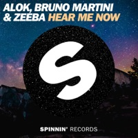 Alok & Bruno Martini & Zeeba - Hear Me Now