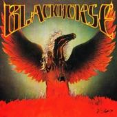 Blackhorse - Dave's Song