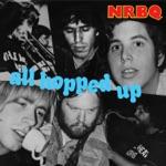 NRBQ - Ridin' In My Car